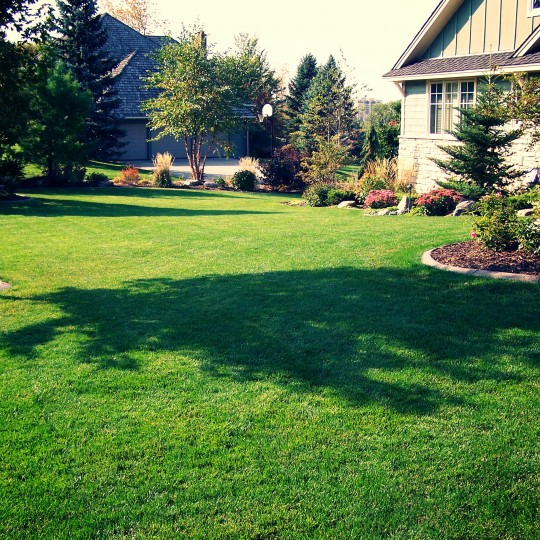 Lawn-Mowing-Lawn-Care-Edina-mn