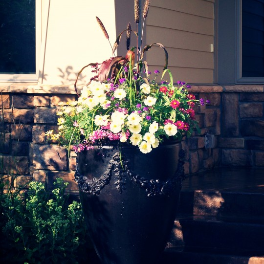 annuals-color-flower-planting-urn-Lakeville-mn.jpg