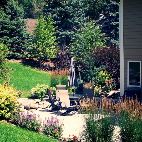 deck-color-eden-prairie-mn